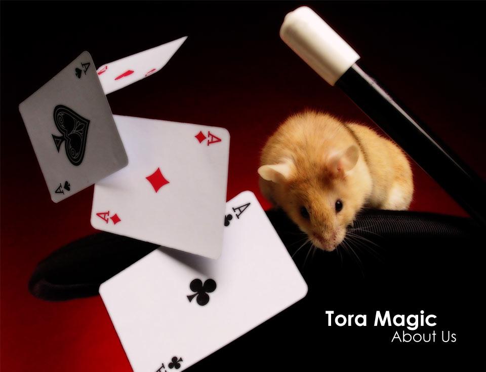 About Tora Magic